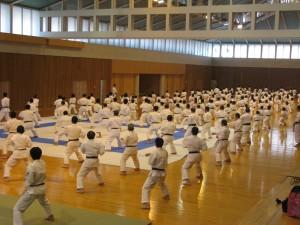curso de tecnico de larate shotoka JKA