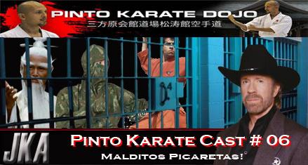 Podcats karate picaretas nas artes marciais