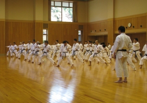 Curso de karate JKA
