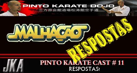 Pito karate cast resposrtas referente ao numero 11
