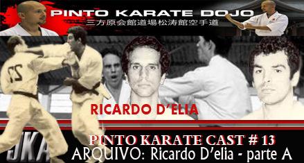 A historia do karate brasileiro arquivada em audio!