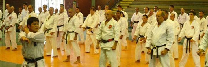 Treinamento de Kata com Murakami sensei