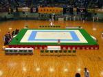 Revestimento de EVA usado no Mundial JKA