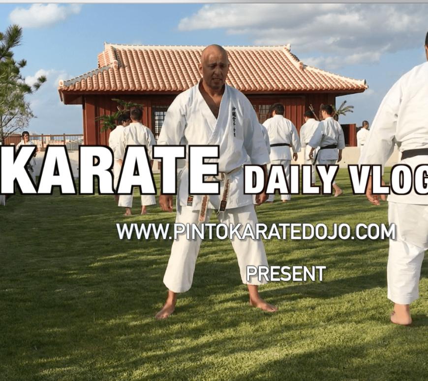 Conhecendo o Museu do Karate e o berço