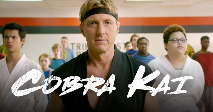 cobra-kai-sensei-johnny.jpg